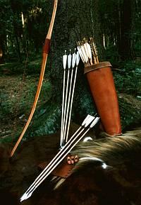 Bogen und Pfeile lehnen an einem Baum