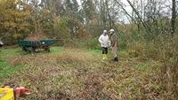 Forum pro Lebensqualität: und das Schnittgut bekommen die Elche im Wildpark