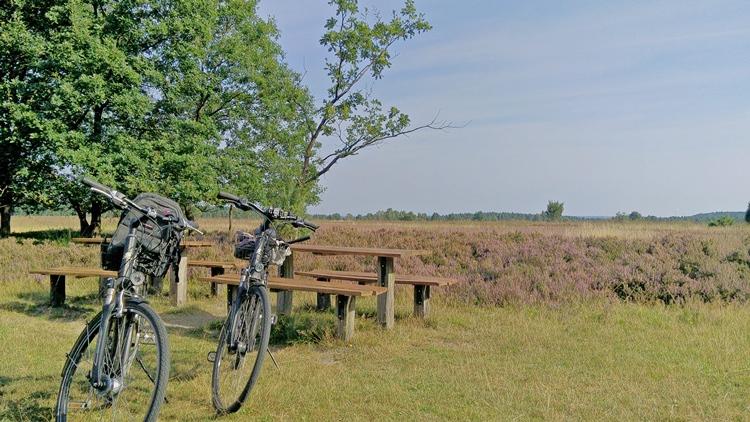 zwei Fahrräder stehen auf einem Weg in der Heide