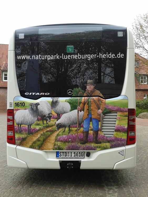 Naturpark-Bus: Rückansicht