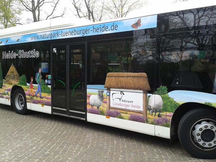 Naturpark-Bus: Seitenansicht links