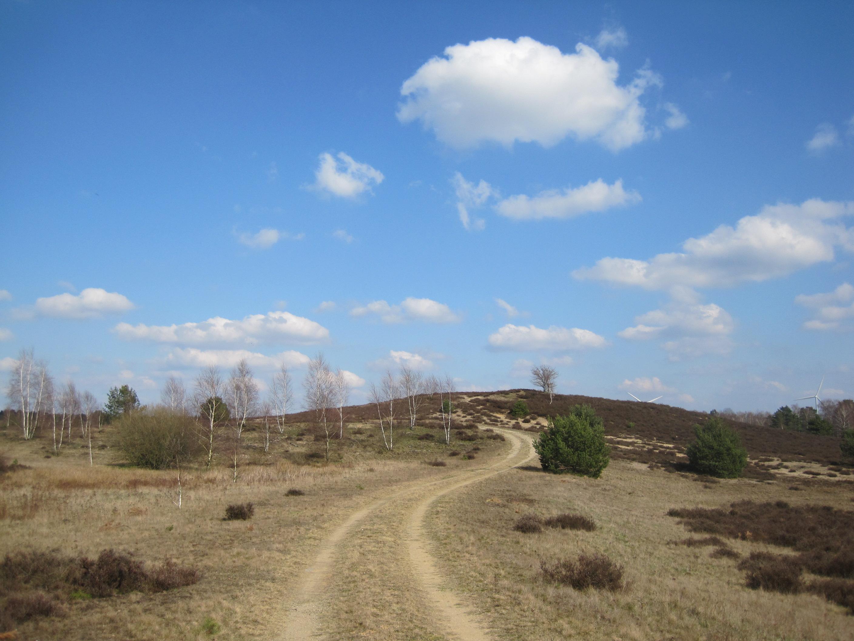 ProjektmanagerIn zur Umsetzung des Naturparkplans gesucht