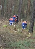 Jugendfeuerwehr Gellersen: entkusseln in der Kirchgellerser Heide