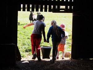 Eine Woche auf dem Schulbauernhof gewinnen