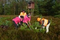RegioKult: in Aktion in der Schwindebecker Heide