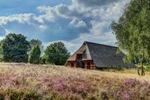 Schafstall Timmerloher Heide