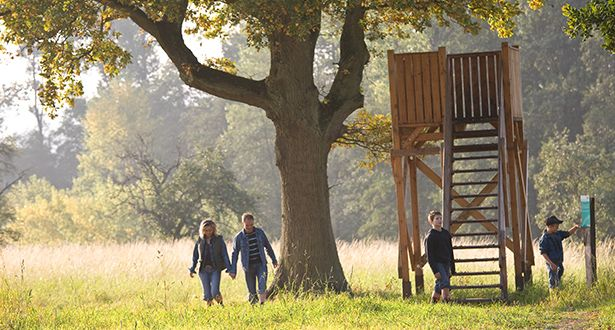 Eine Familie mit zwei Kindern spaziert durch waldiges Heidegebiet
